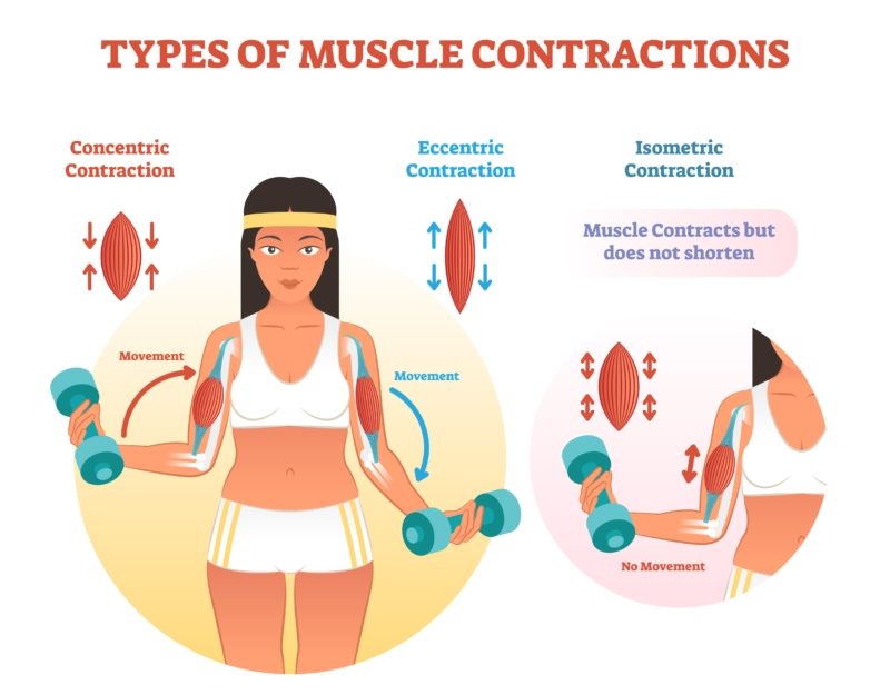 Isokinetic Exercises: The Science, Examples and How You Can Benefit?